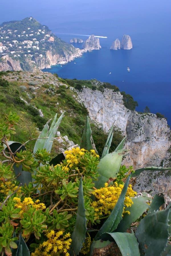 Capri Gipfel stockbilder
