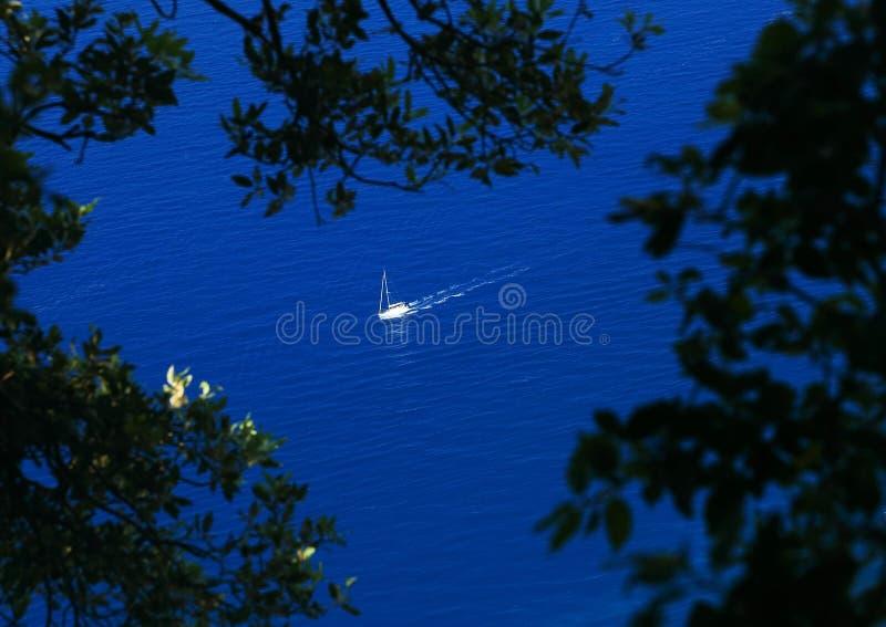 Download Capri Island stock image. Image of tree, luxury, landscape - 39514595