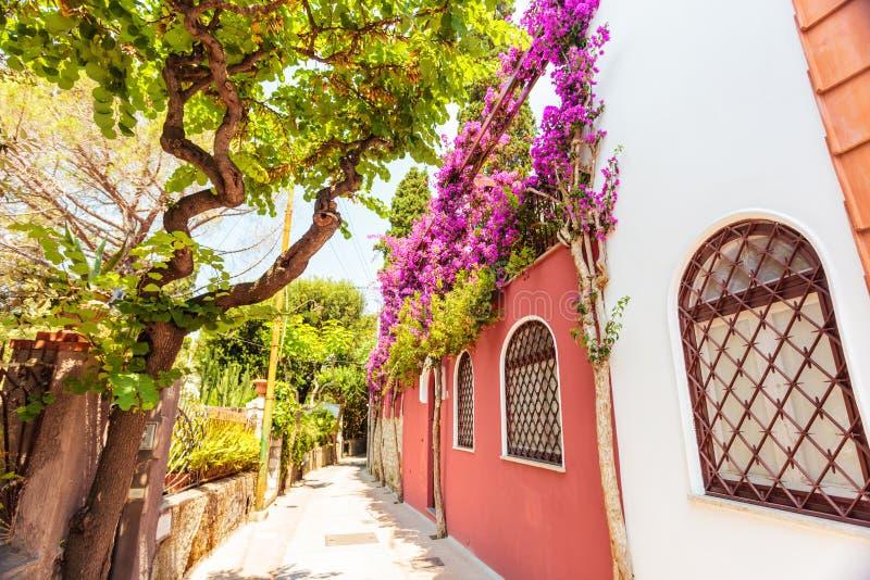 Capri-Straße lizenzfreie stockfotos