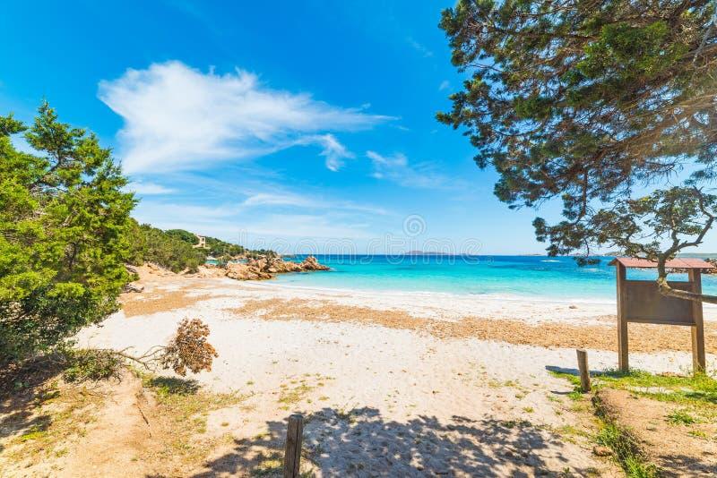 Capriccioli beach on a clear day. Sardinia royalty free stock photography