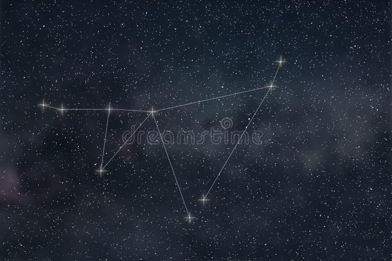 Capricorn gwiazdozbiór Zodiaka Capricorn Szyldowy gwiazdozbiór Lin ilustracja wektor