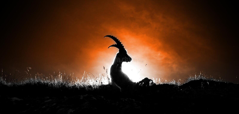 Capricorne image libre de droits