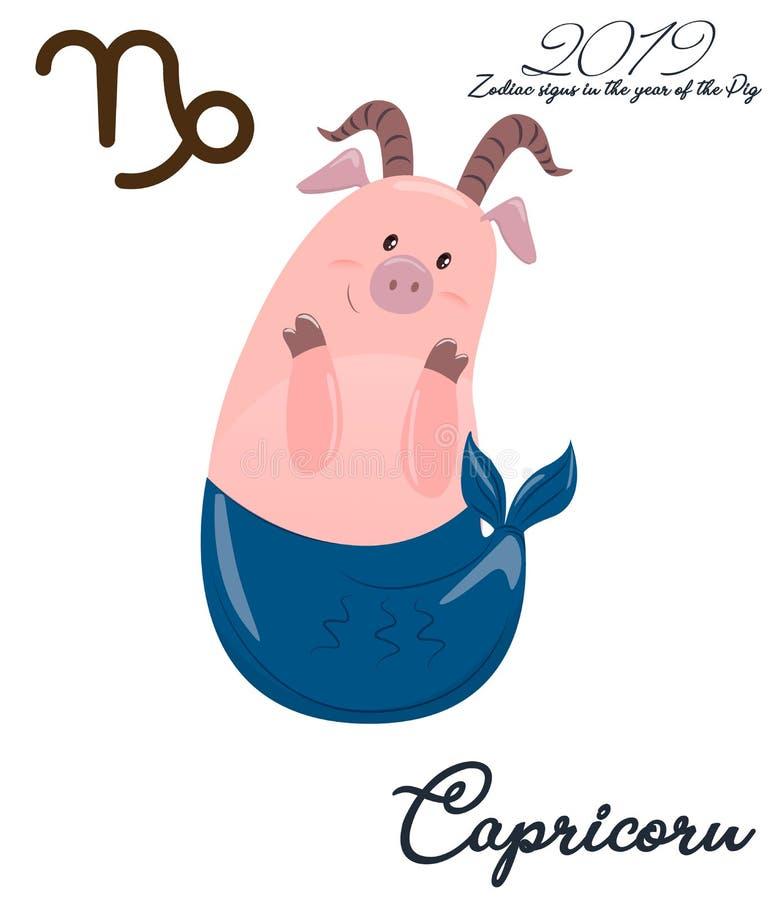 Capricornio del cerdo del zodiaco Símbolo chino del horóscopo 2019 años Ejemplo colorido del horóscopo del artoon del niño aislad ilustración del vector