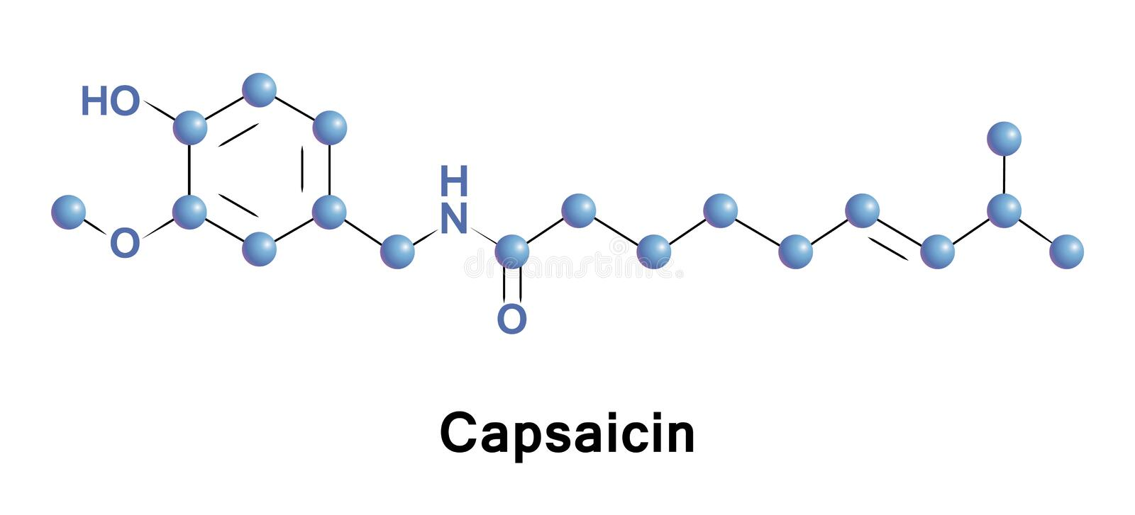 Capsaicin is an active component of chili stock illustration