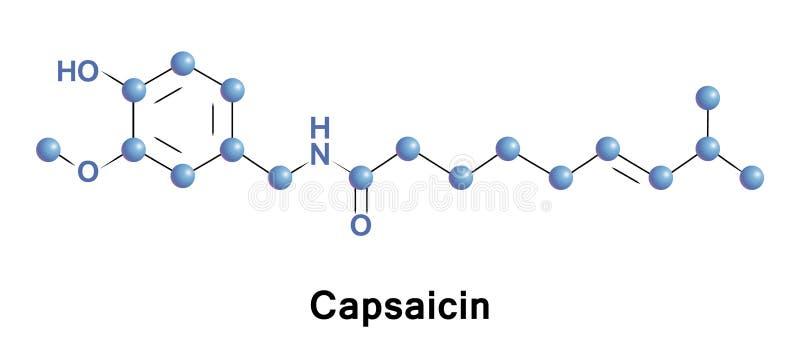 Capsaicin jest aktywnym składnikiem chili ilustracji