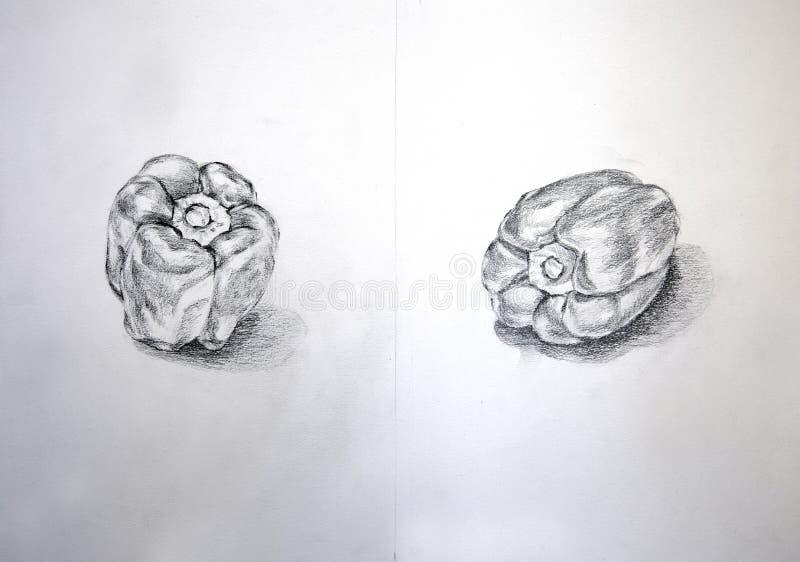 Capsium skissar den olika sikten på blyertspennan royaltyfri illustrationer