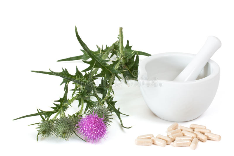 Capsules of milk thistle stock photo