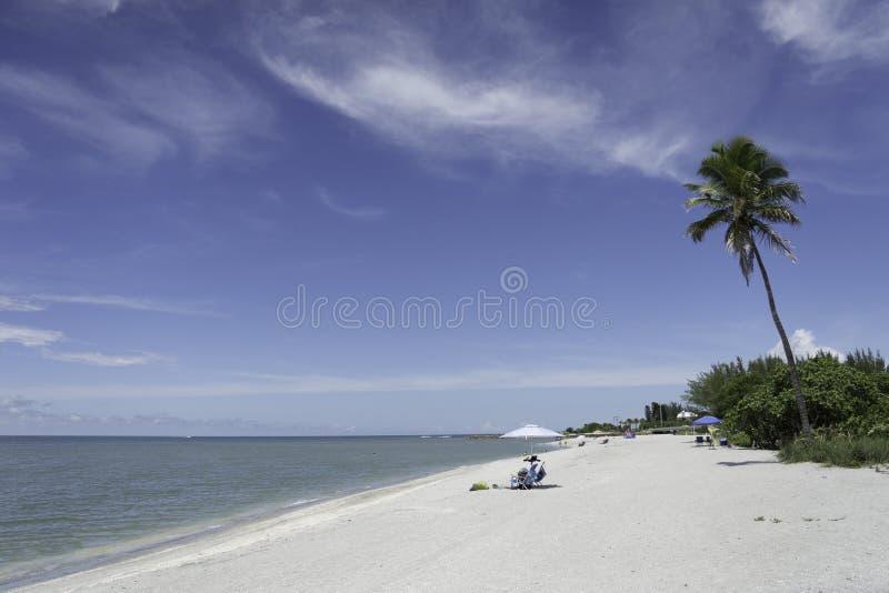 Captiva-Insel in Florida lizenzfreie stockfotografie