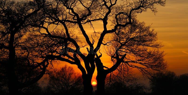 Captura de la puesta del sol imagenes de archivo