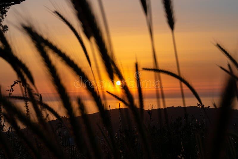 Sunset during walking in Nature royalty free stock image