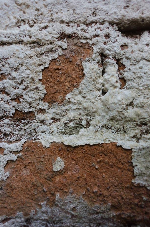 Capture d'écran d'un mur de briques altérées - arrière-plan grincheux photo libre de droits