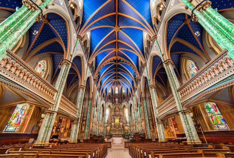 Capture en angle bas de l'intérieur de la basilique Notre-Dame à Ottawa, Canada image libre de droits
