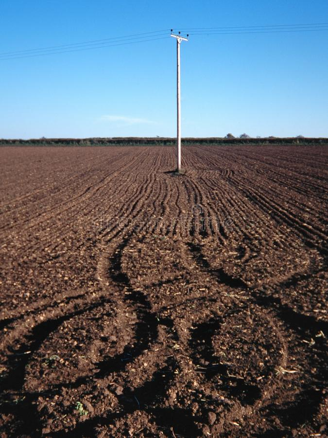 Capture verticale d'un champ avec un poteau en fil blanc au milieu et un ciel dégagé en arrière-plan photo stock