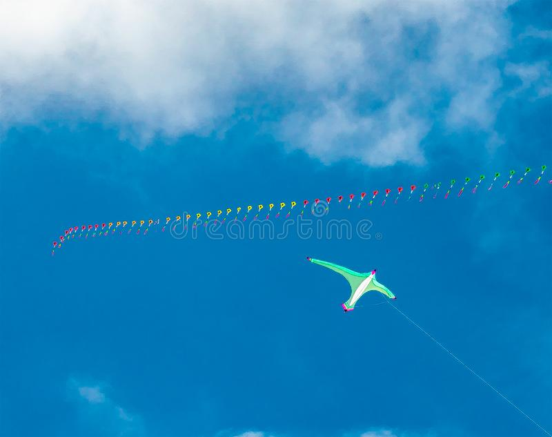 A Bird? A Plane? A Kite! royalty free stock images