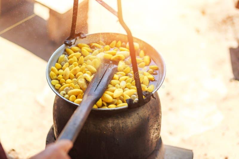 Capullos amarillos de ebullición del gusano de seda por la caldera para hacer el hilo de seda foto de archivo libre de regalías