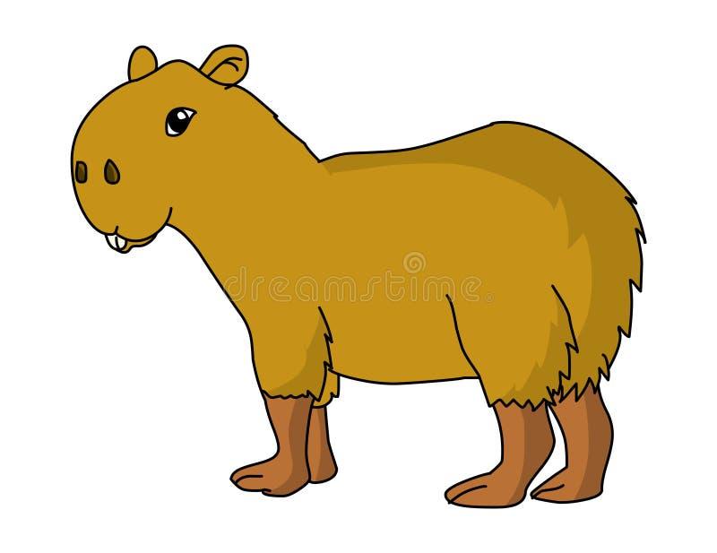 Capybaraillustrationsvektor Karikatur Capybaravektor vektor abbildung