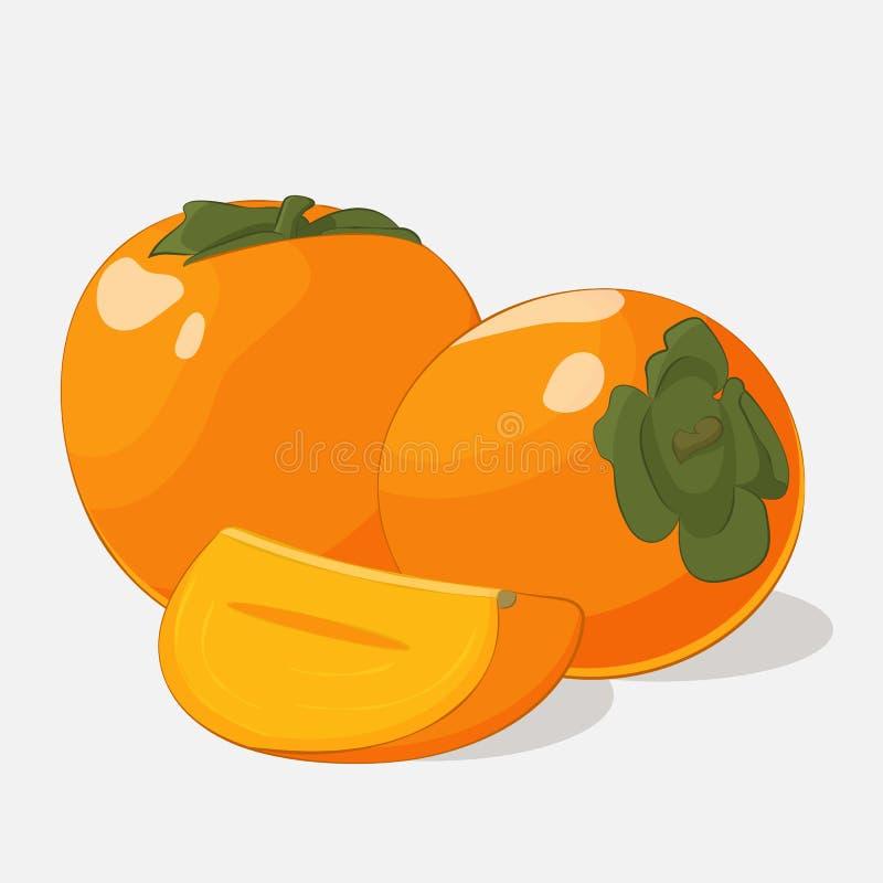 Caqui suculento brilhante no fundo cinzento Delicioso doce para seu projeto no estilo dos desenhos animados Ilustração do vetor f ilustração do vetor
