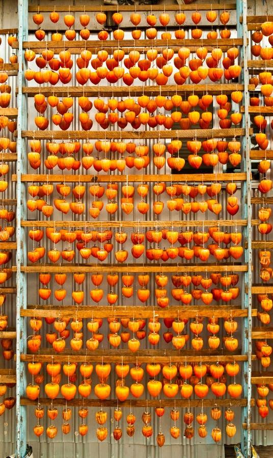 Caquis en un verano anaranjado del otoño del estante de sequía fotos de archivo libres de regalías
