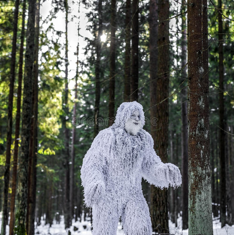 Carácter del cuento de hadas del yeti en foto al aire libre de la fantasía del bosque del invierno fotografía de archivo libre de regalías