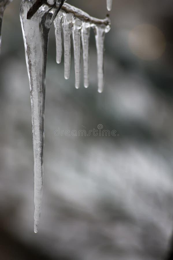 Carámbanos en inviernos muy fríos oscuros de un fondo imagen de archivo libre de regalías