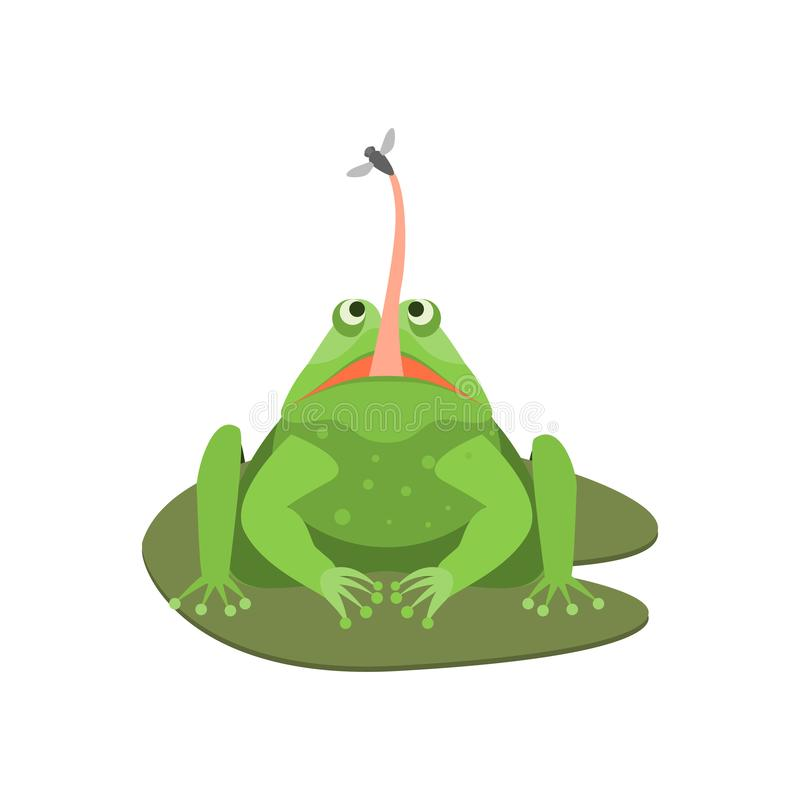 Caráter bonito da rã verde dos desenhos animados com inseto Vetor ilustração stock