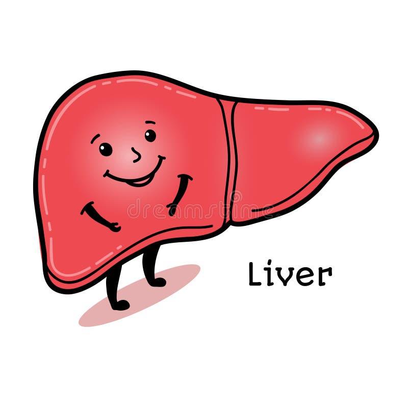 Caráter humano bonito e engraçado do fígado ilustração stock