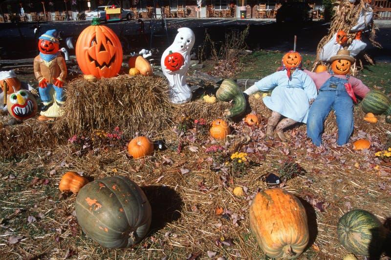 Caráteres de Dia das Bruxas no remendo da abóbora, Maggie Valley, Tennessee imagem de stock royalty free