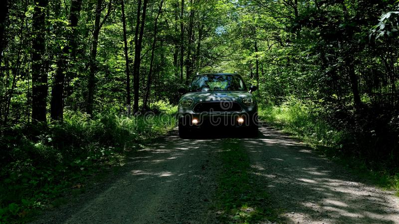 Car Approaching in Dark Forest stock photo