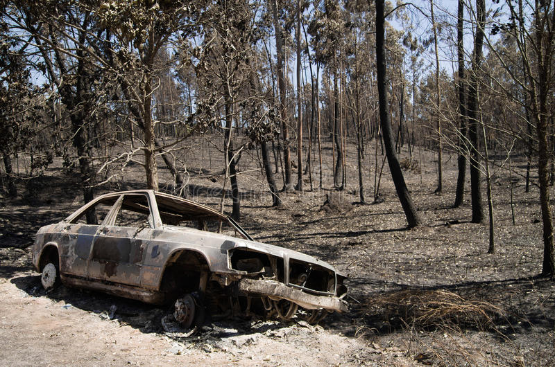 Car burnt by the road on a forest fire - Pedrogao Grande. Burnt car pushed aside the road before a burnt forest caused by a massive forest fire. Pedrogao Grande stock images