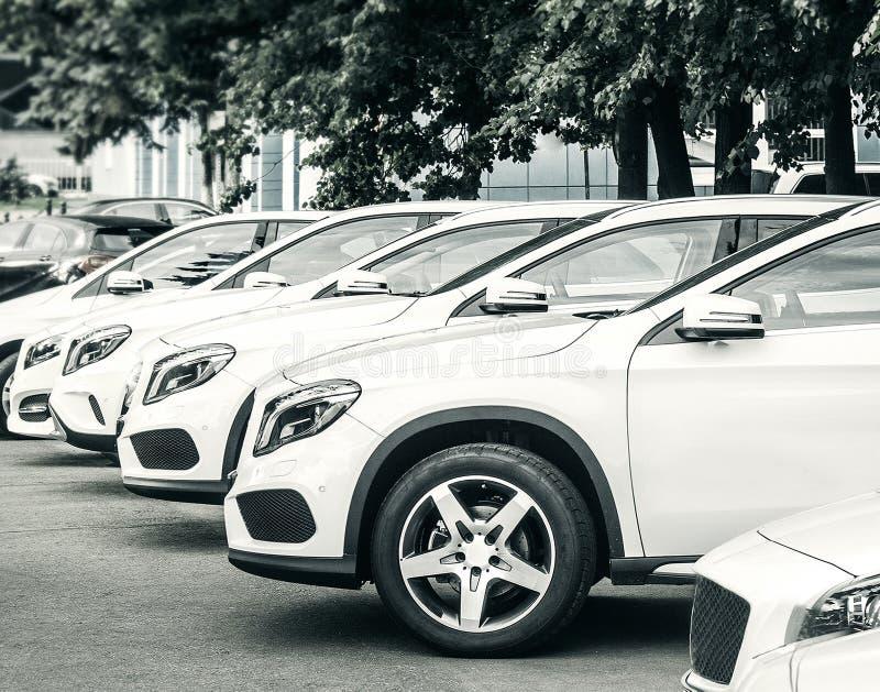 Car dealer center. New cars in the dealer center royalty free stock images