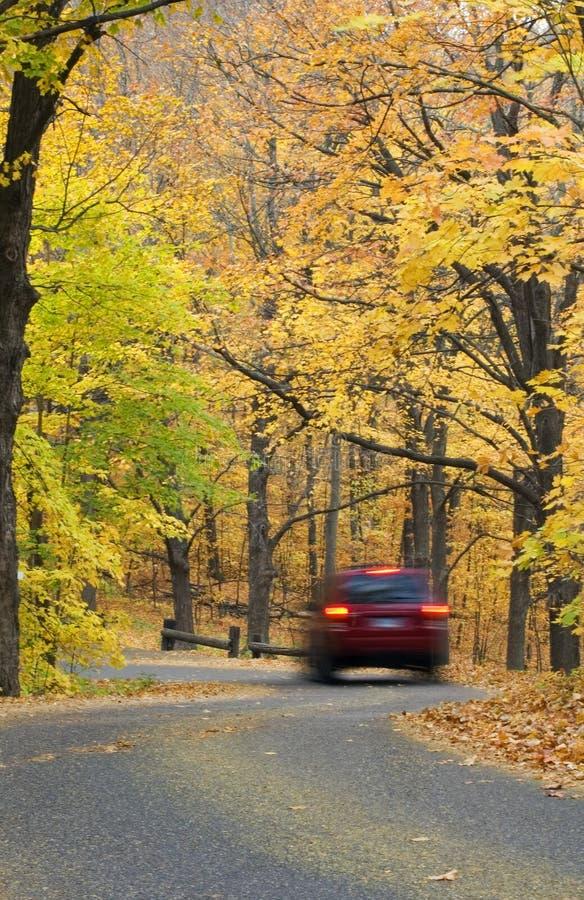 Car Drives Down Autumn Canopied Road stock photos