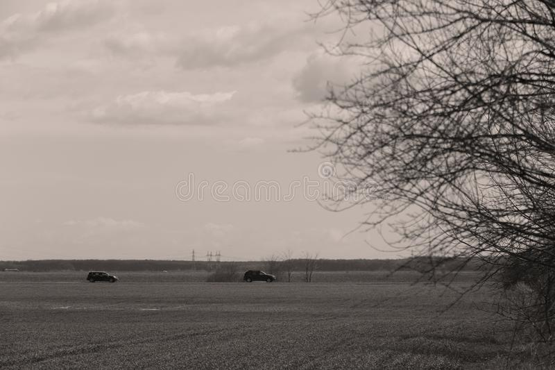 Car driving in the wild. Car driving a road in the middle of a green field stock images