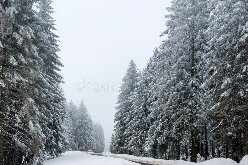 Car driving on winter road. Car driving on a road in snowy winter landscape with red boundary posts stock photos