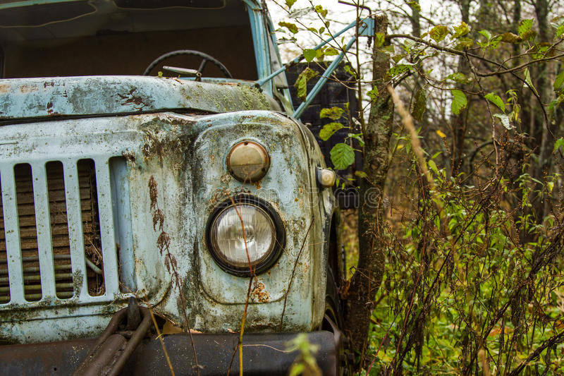 Car in forest royalty free stock photography
