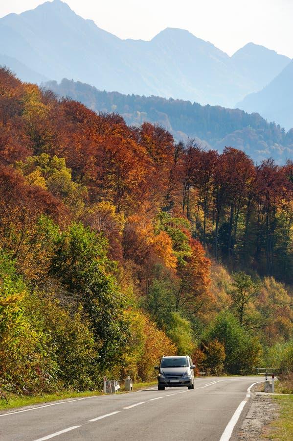 Car in the forest at Transfagarasan road. Car in the forest at Transfagarasan mountain road, Romania stock photos