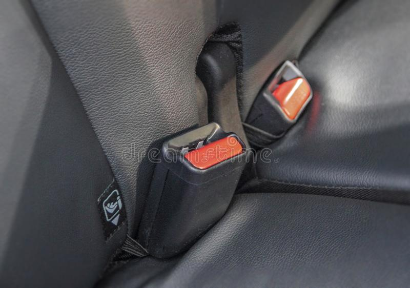 The seat belt buckles. Car interior, the seat belt buckles on the back seats stock photo