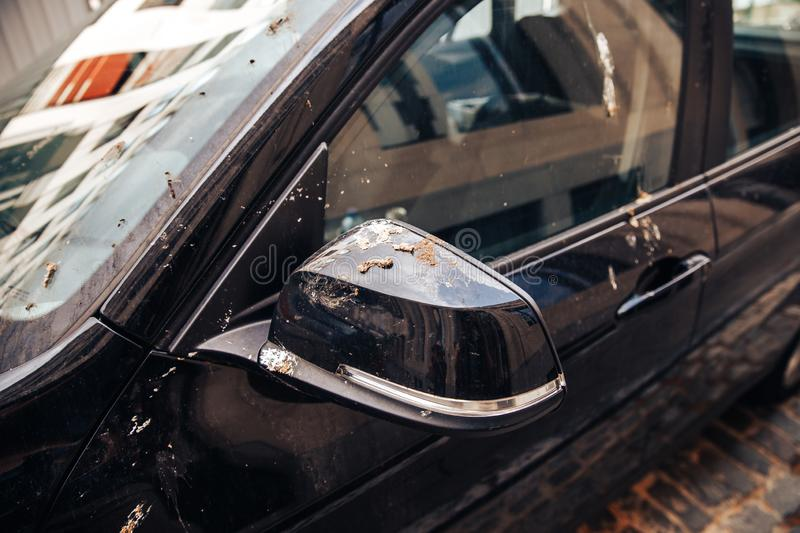 Car with lot of bird droppings. Concept bad parking.  royalty free stock photo