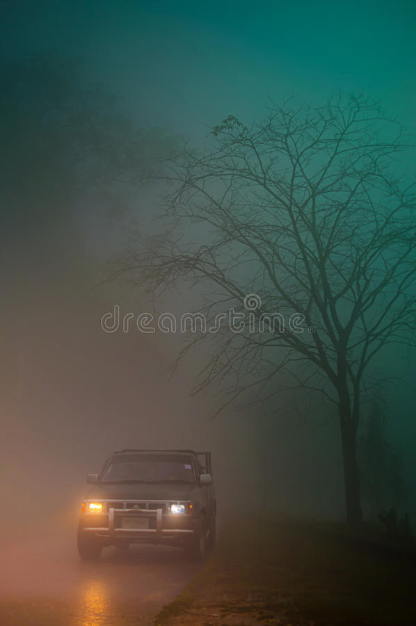 Download Car in the mist stock photo. Image of nightfall, jungle - 25044084