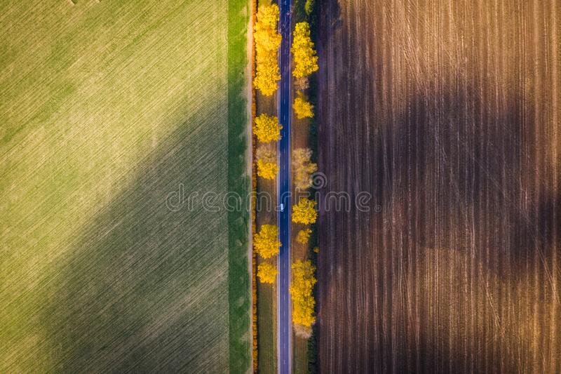 Car moving on straight road in fall trees in field. Aerial view. royalty free stock photo