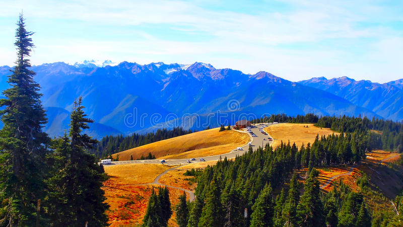 Car parking in the Olympic National Park. In the Olympic National Park royalty free stock photo