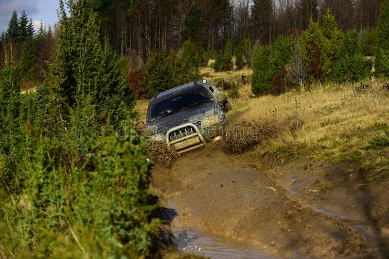 Car racing in autumn forest. Off road vehicle or SUV overcomes obstacles. Auto racing on fall nature background. Competition, energy and motorsport concept royalty free stock images