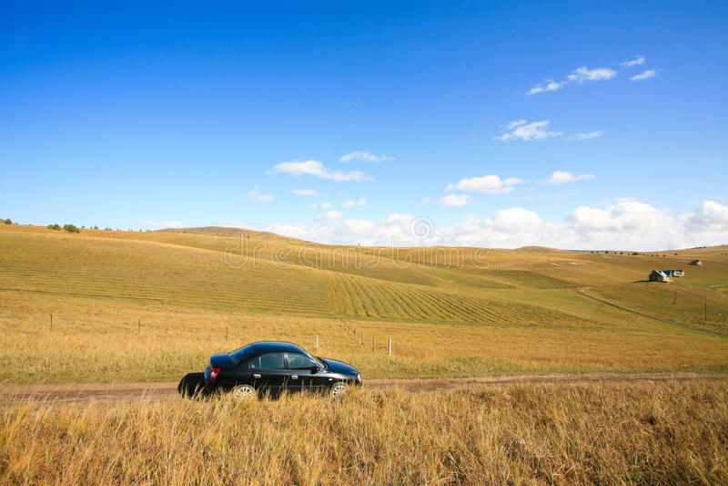 Car on road among meadows stock photos