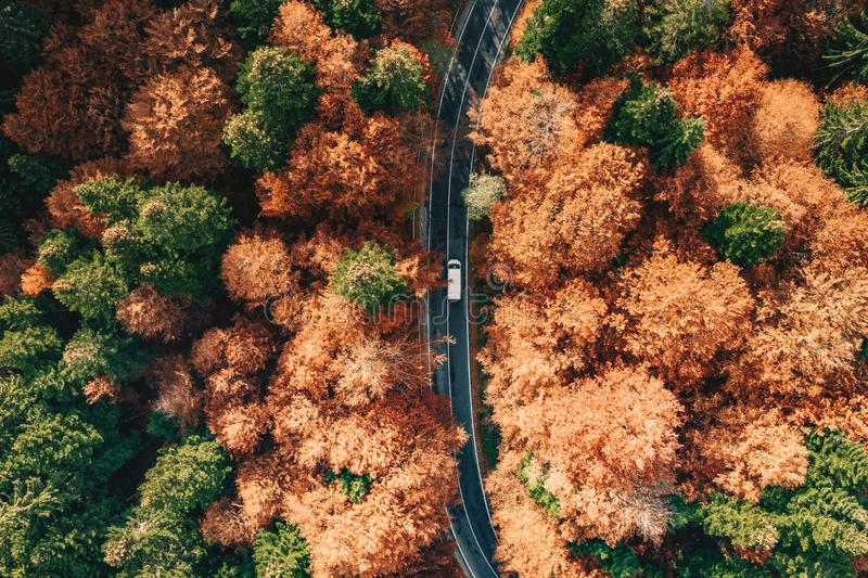 Car on the road surrounded by forest in the fall. Carpathian Mountains, Romania stock photography