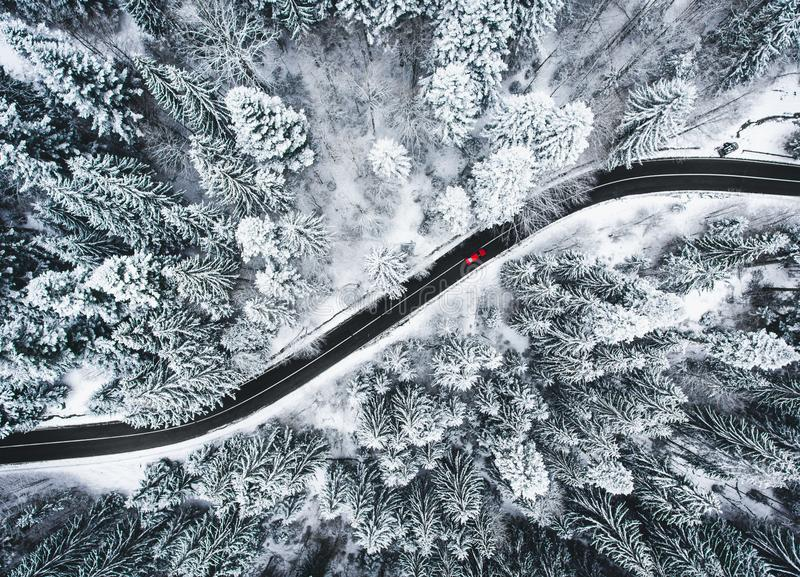 Car on road in winter trough a forest covered with snow royalty free stock images
