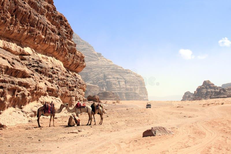 Car safari in Wadi Rum desert, Jordan stock photography