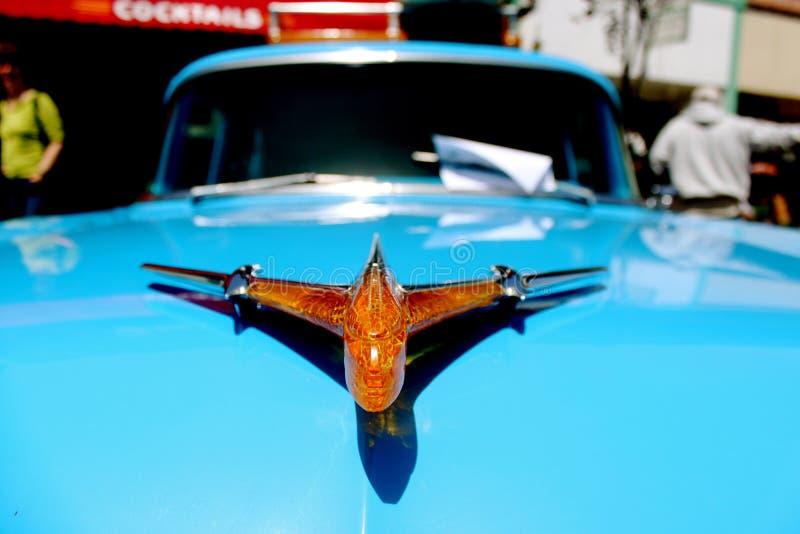 Car Show-Schönheit stockbilder