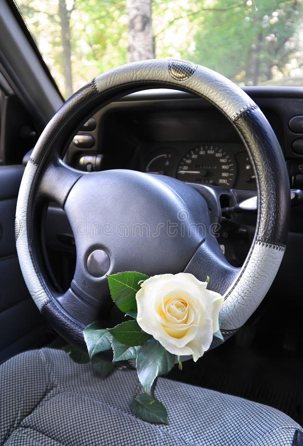 Download Car steering wheel stock image. Image of flower, unexpectedly - 19878905