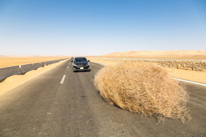 A car stopped by a giant tumbleweed on a highway with sandy dunes, between Bahariya oasis and Farafra, Western Desert of Egypt. royalty free stock photo
