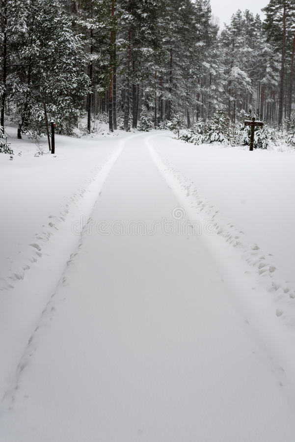 Car tire tracks on winter road. In deep snow in lonely forest royalty free stock photo