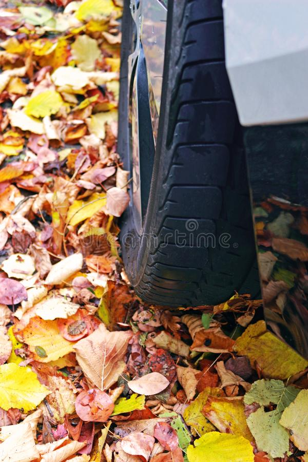 Car tire on wet autumn leaves royalty free stock images